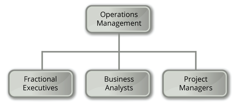 Operations Conslting Services, Data-Driven and Innovative